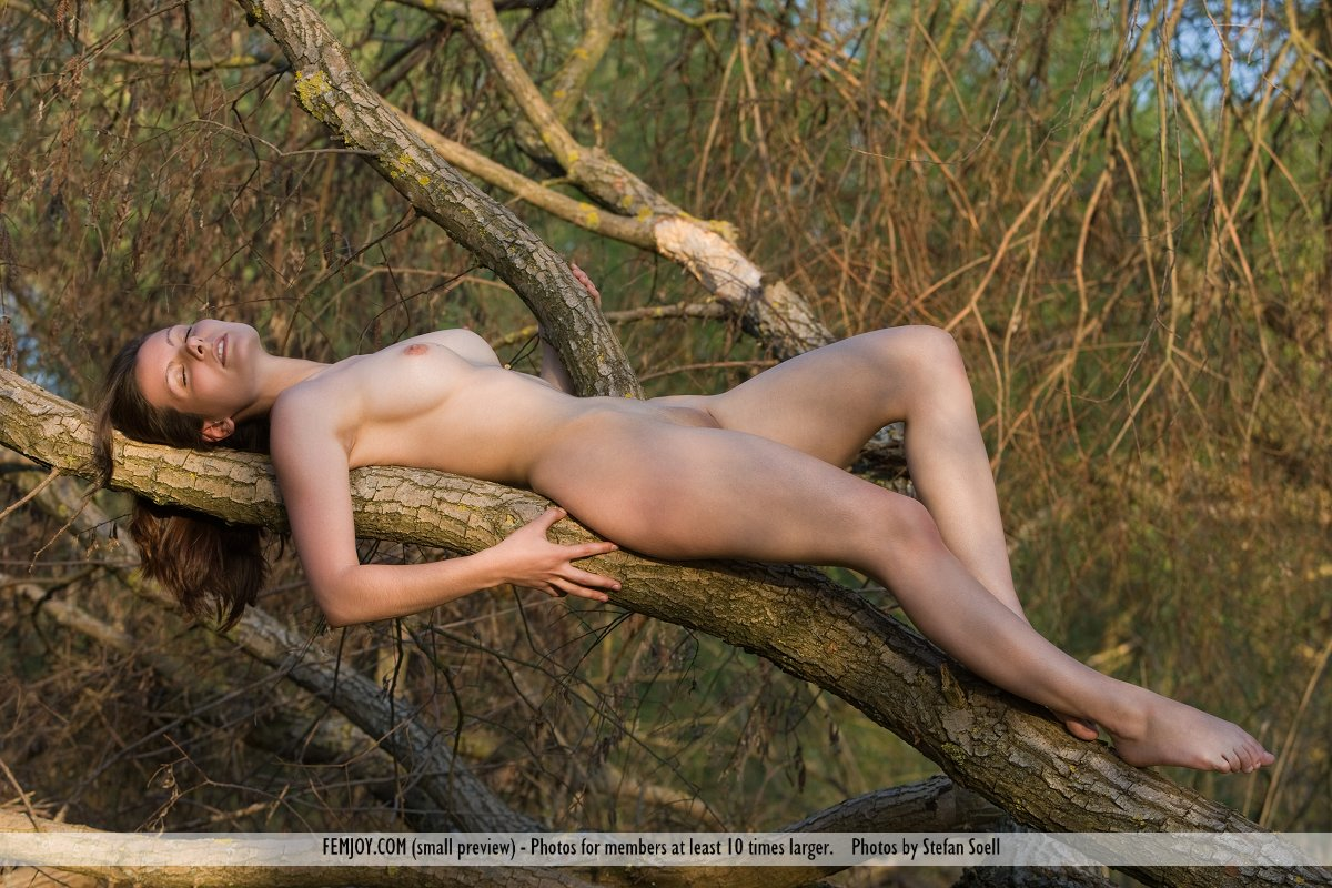 free tree sex with nude girls