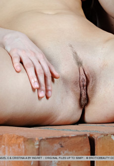 sexy-ladies-show-naked-pussy-together-16